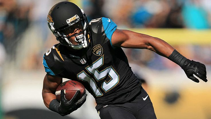 Allen Robinson                           (Getty Pictures)                                                                                                   The Jaguars are letting Allen Robinson hit NFL free agency. The highest unrestriced...