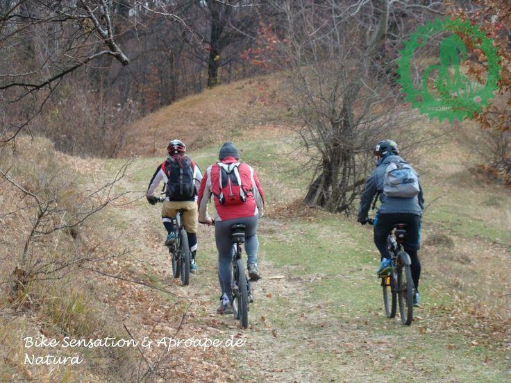 BikeSensation Romania | Galerie foto ciclism Drumul Hotilor - Campina