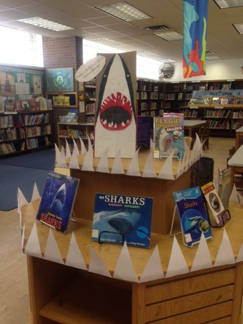 """THERE'S SHARKS IN BROOKLYN! It's Shark Week at Brooklyn Public Library's """"House of Windsor"""" branch. (Windsor Terrace, December 2014)"""