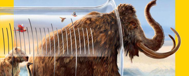 Your De-Extinction Questions Answered – Phenomena
