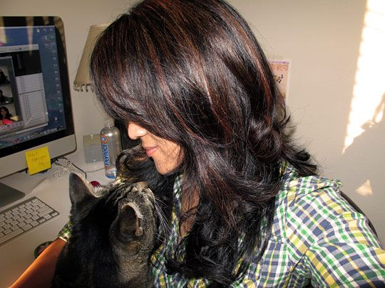 Love the dark brown highlights mixed with the black hair