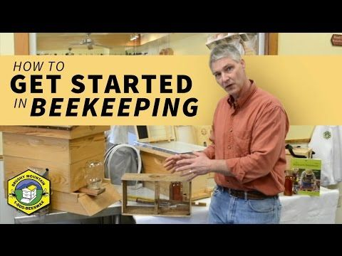 Tips for Getting Started in Beekeeping (Video) - Homesteading and Livestock - MOTHER EARTH NEWS