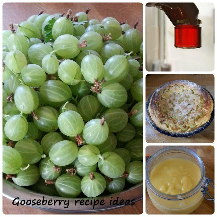 Gooseberry recipe ideas