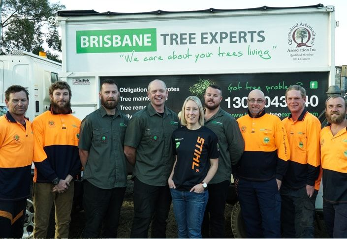 Brisbane Tree Experts is the leading company providing the best services of tree maintains, tree removal services with the professional staff having many years of experience. They use latest equipments in their services. To hire their services, please visit http://www.brisbanetreeexperts.com.au/