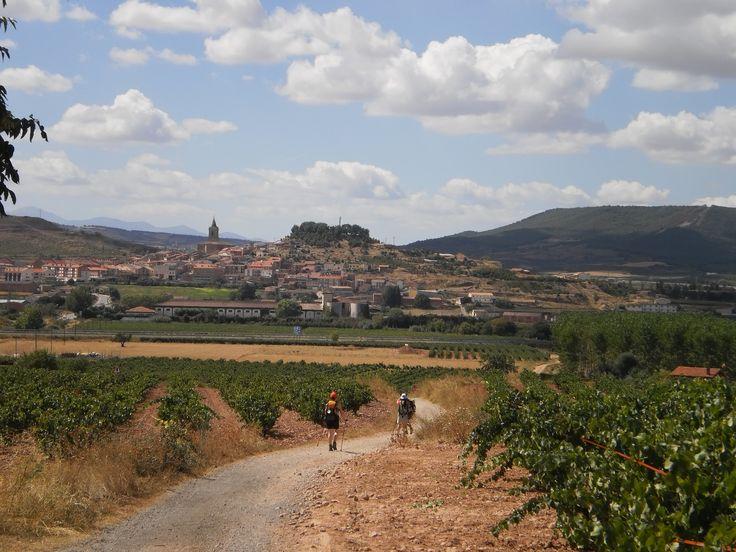 Ventosa, La Rioja, Camino de Santiago