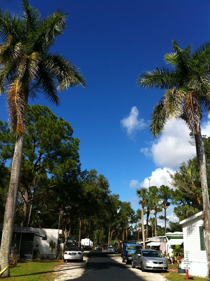 1000 Images About Florida Campgrounds On Pinterest