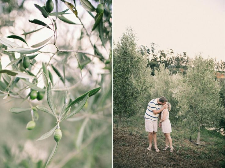 Engagement session at Bartinney winelands. Olive trees making for a beautiful background.