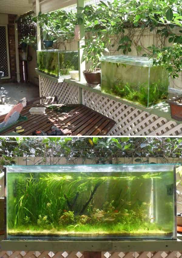 22 Small Garden or Backyard Aquarium Ideas