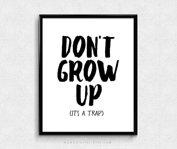 SALE   Don't Grow Up It's A Trap Humor Poster Funny door MomoDigital