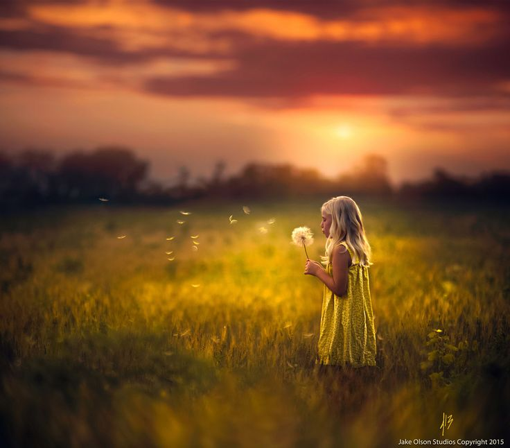 Mid Summer's Dream by Jake Olson Studios on 500px