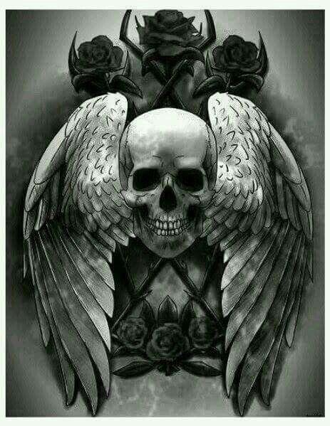 the 25+ best skulls ideas on pinterest | skull art, skull tattoos, Human Body