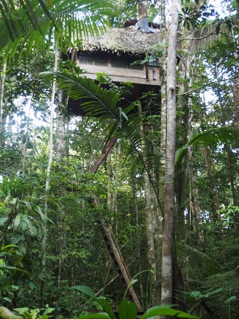 #VagamundosColombia Mi cabaña en un árbol en Reserva Natural Tanimboca Leticia P4015060, via Flickr.