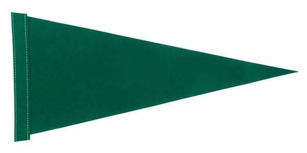 12 Dark Green Blank Felt Pennant Flags Assorted Sizes and Prices