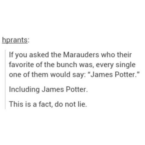 Pretty sure James would say himself as a joke and then say Sirius because let's face it, those two are practically married.