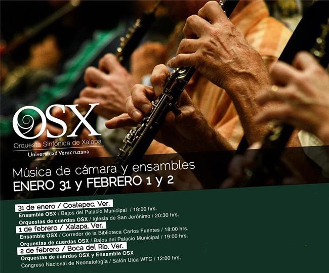 Música de cámara y ensambles Enero 31 y Febrero 1 y 2  Orquesta Sinfónica de Xalapa
