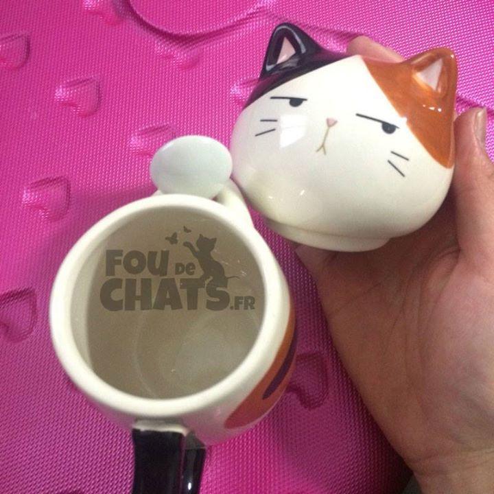 Les chats vous font perdre la tête et vous leur rendez bien   #mug #original #foudechats Le chemin le plus original vers le #bonheur.  http://ift.tt/2FlS7BT  découvreur de merveilles #chats.  Des #cadeaux pour tous les amoureux des #chats et des #chatons.