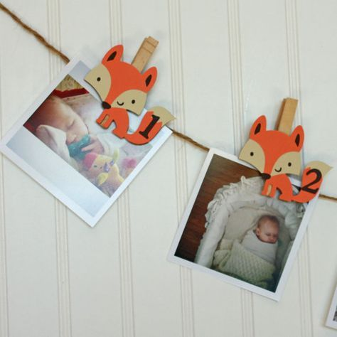 First Birthday Fox Party, Woodland First Birthday, Fox Monthly Photo Banner by LittleBitsHomemade