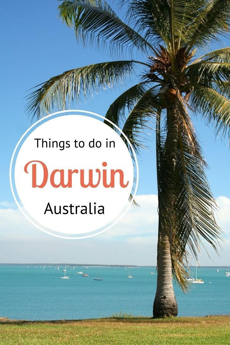 Things to Do in Darwin, Australia by @ytravelblog | Follow @seesomethingnew for more Australian travel inspiration and ideas