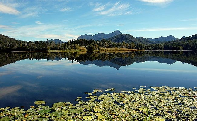 Australia: Murwillumbah is NSW's Magnet for Adventure --  (View of Mount Warning from Claire Hall Dam.) Country towns in northern NSW are notoriously beautiful, and Murwillumbah, NSW, is no exception.    Located just 13 kilometres south of the Queensland border, Murwillumbah lies amongst forest-clad mountains, wandering rivers and fields of sugar cane. Population of around 8,000 people . Near 5 World Heritage sites. Charming.