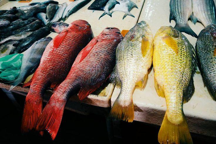 Ikang apo ni jang  #VSCOcam#FOODporn#seafood#throwback#FOODink#vscoMAKAN#tawau#TRAVEL#culinary#finedining#eatnowkl#foodink#foodie#foodgasm#fooddiary#sabah#foods#foodstylist#foodporn#vscogrid#vscomakan#vscocook#vsco#vscomalaysia#vscofood#foodvsco#igersmalaysia#malaysianig#ikutcarakita#gengkakitravel http://tipsrazzi.com/ipost/1520325194319826845/?code=BUZR7WOgo-d