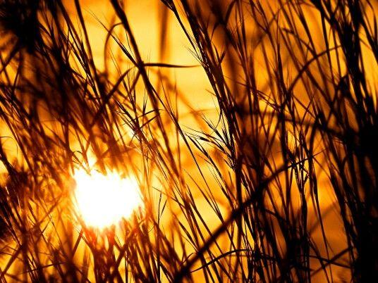 Sunset Kruger National Park South Africa.