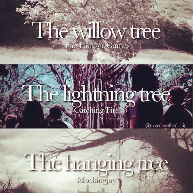 For each movie there is a certain tree!  Hunger Games - the willow tree Catching Fire - the Lightning tree Mockingjay - the hanging tree