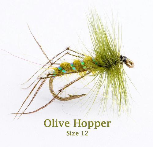 Fishing Flies. For more fly fishing info follow and subscribe www.theflyreelguide.com Also check out the original pinners site and support!