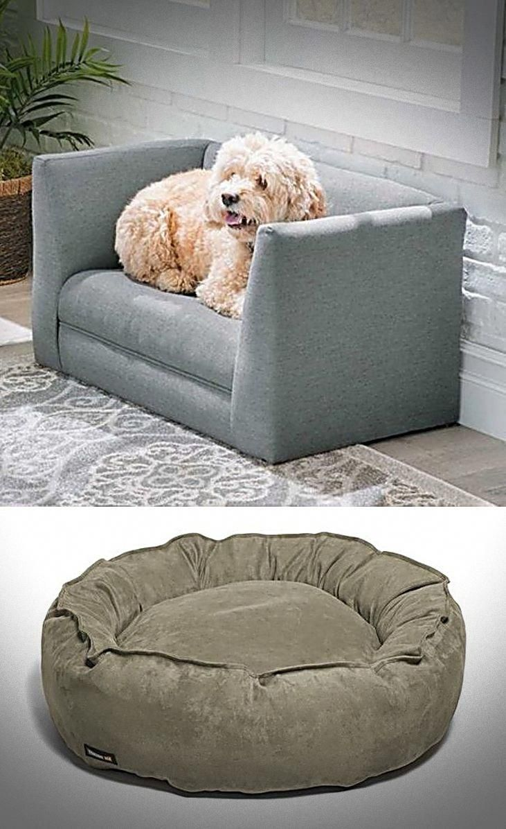 Latest Doggie Beds For Both Large Small Dogs Best Casper Dog Bed Bean Dog Beds Or Even See Details Orvis Dog Top Dog Beds Cool Dog Beds Orthopedic Dog Bed