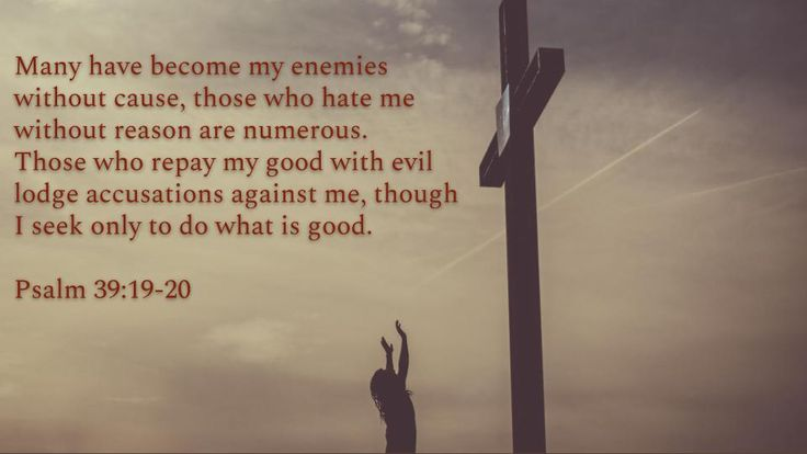 Psalm 38:19-20 - Many have become my enemies without cause...
