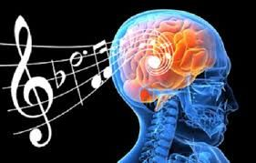 Gracias a técnicas como la RMf y PET se ha descubierto que la música tiene el mismo efecto que la comida, la actividad sexual o algunas drogas ya que produce una gran actividad en las conexiones cerebrales