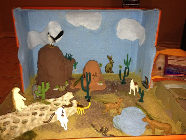 Desert Project It Was Fun And Easy Kids Pinterest