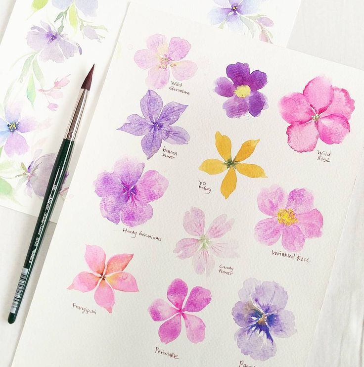 This is the 5 petals florals that I teach in my floral watercolor workshop, one technique to create many florals. You can paint Sakura flowers using this technique too, with Triangle brush M #esthertrianglebrush  My next available Floral watercolor workshop is on 13/5 Sat, 2.30-6pm, Mother's day Special. 10% discount for Mother/Daughter/SonIt will be sweet to have mother and son team 22/5 Mon, 2.30-6pm, weekday special@$135 6/5 Sat, 2.30-6pm Brush Calligraphy N Floral Watercolor @gu...