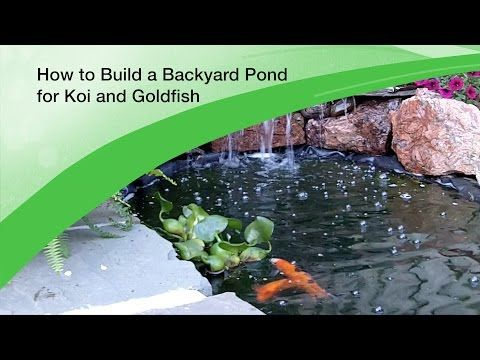 64 best images about diy water features on pinterest for Building a koi pond step by step