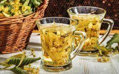 Chá de Carqueja Para Aliviar Dor de Cabeça