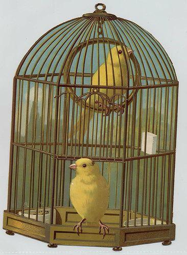 Victorian Scrap Birdcage
