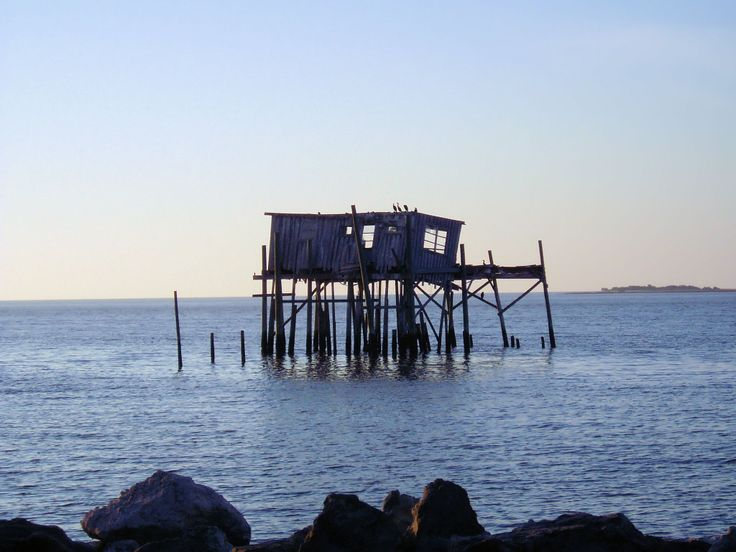 17 best images about west coast florida on pinterest for Cedar key fl fishing
