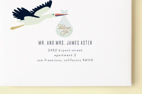 Sweet Delivery Baby Shower Invitations envelopes