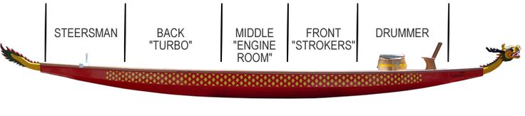 I LOVE this!! The boat crew is broken into three sections, the front which is the first four paddlers, the engine room which is the middle two paddlers and the back which is last four paddlers.