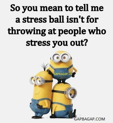 So you mean to tell me a stress ball isn't for throwing at people who stress you out? Funny Minion Joke About Stress vs. Ball