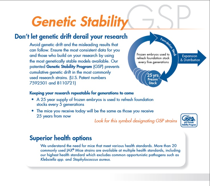 Our patented Genetic Stability Program (GSP) effectively prevents cumulative genetic drift, including that caused by copy number variation, in our most popular strains.    http://jaxmice.jax.org/genetichealth/stability.html