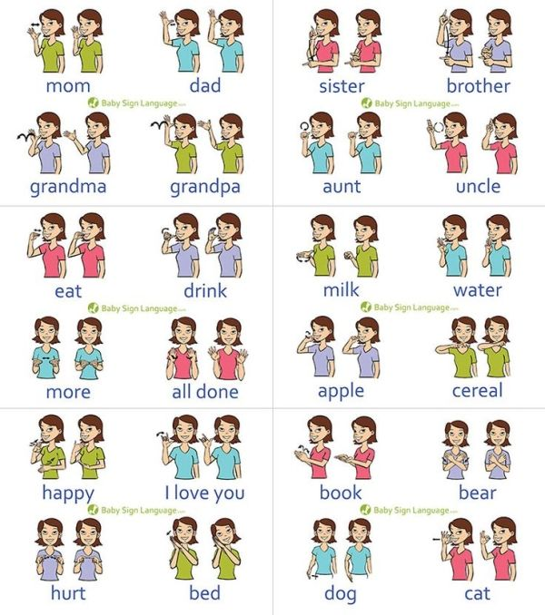 Baby Sign Language Chart by Alexandra Marie