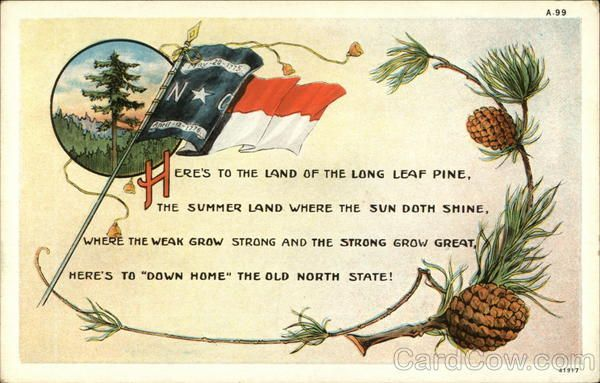 ~ Land of the Long Leaf Pine North Carolina State Flowers & Seals ~