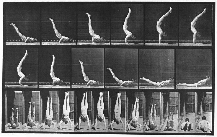 17 Best images about Eadweard Muybridge 1830 1904 on