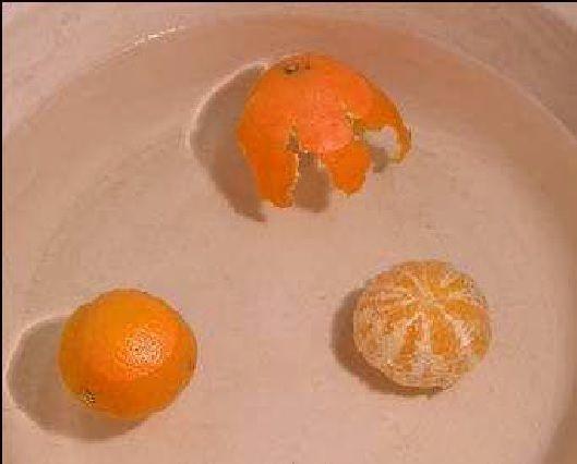 Essa atividade usa uma laranja como modelo para mostrar evidências das diferentes densidades da crosta terrestre e de suas camadas internas.