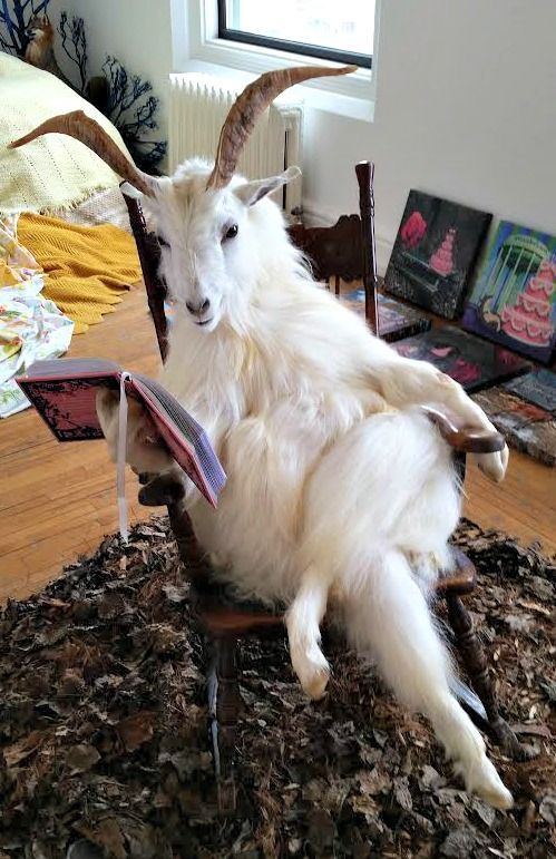 Do I want a dead goat reading Alice in Wonderland in the middle of my house? Maybe, maybe not.