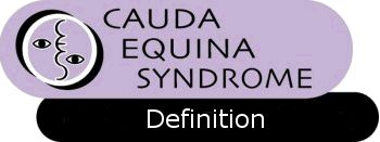 Cauda Equina Syndrome Support Group