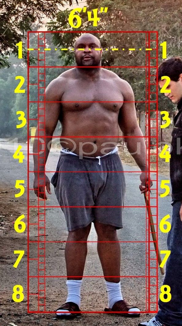 "Art Referernce. Bob Sapp. 6'4"". Body Reference. Human Proportions. #Bob_Sapp #Sapp #Art_Reference #Figure_Drawing #Height #Art_Template"