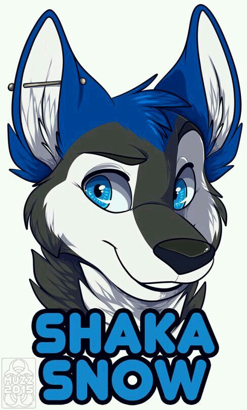Shaka Snow Furry art Furry Rajzok