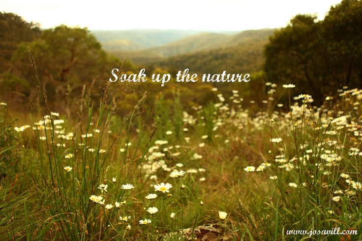 AMAZING REMARKABLE NATURE