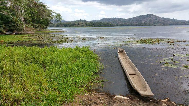Del toro al infinito: PANAMÁ: Los indígenas Emberá del Parque Nacional del río Chagres / Fotos: La Loma.  Su tradicional medio de transporte es el cayuco.